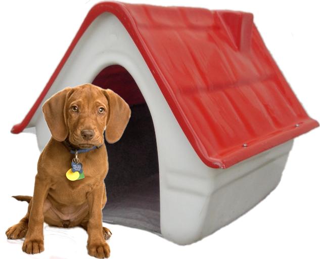 cuchas-fibra-vidrio-RV-para-perro