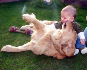 relacion-perro-bebe5