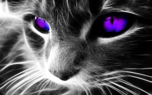 monster-energy-purple-vectore-cat-wallchan-1534397