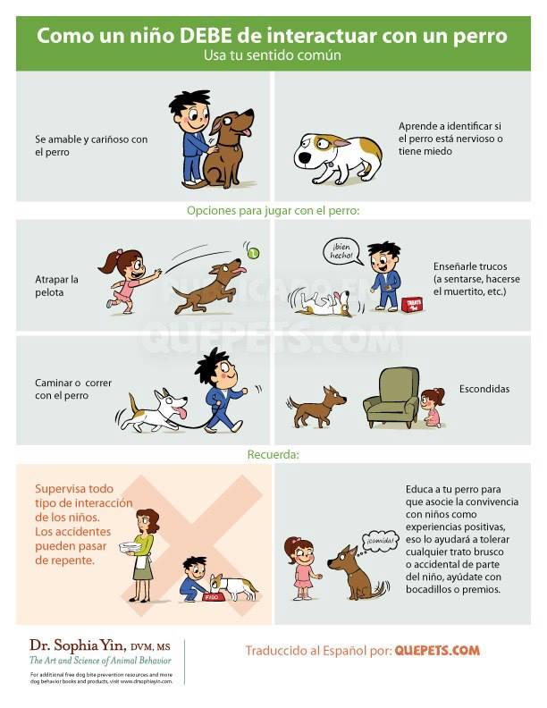 Resultado de imagen para Cómo saludar a un perro