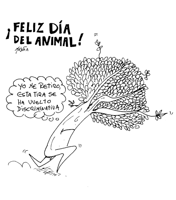 Animal-chiste-8