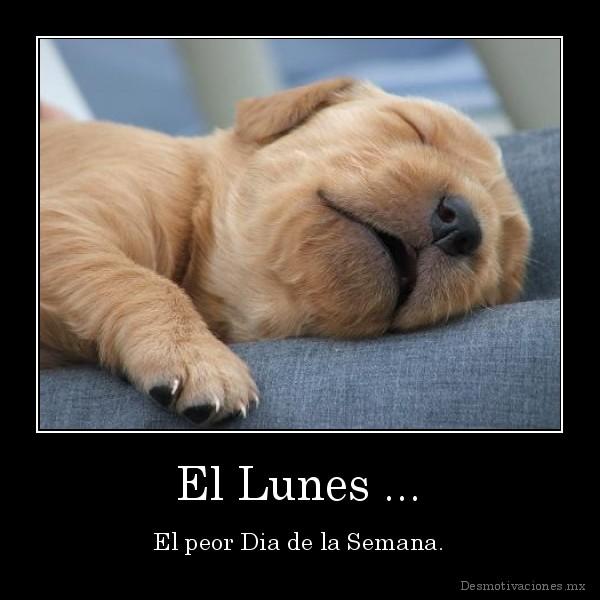 desmotivaciones.mx_El-Lunes-...-El-peor-Dia-de-la-Semana_133410452477