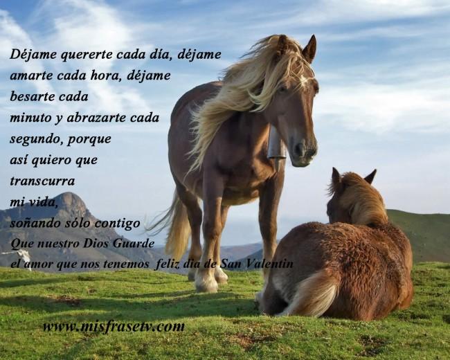 Imagenes bonitas de caballos con frases cortas de reflexin para