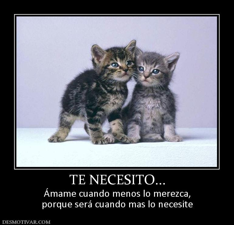 35684_te_necesito (1)