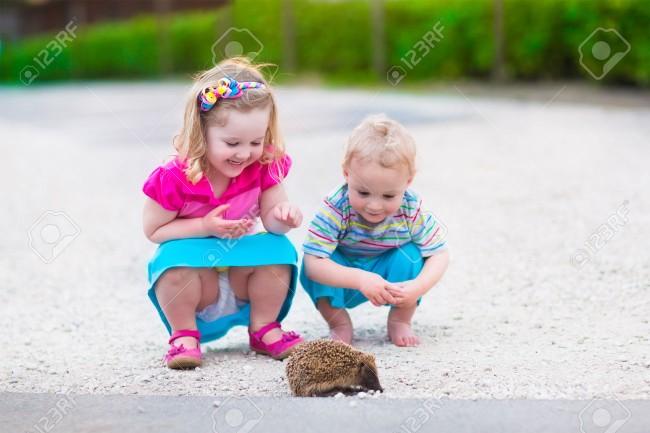 39876776-Ni-os-jugando-con-un-erizo-Los-ni-os-y-las-mascotas-Ni-a-y-beb-adorable-que-juegan-con-un-animal-sal-Foto-de-archivo