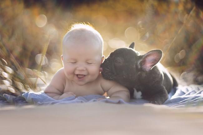 Perros-cuidando-de-bebes-4