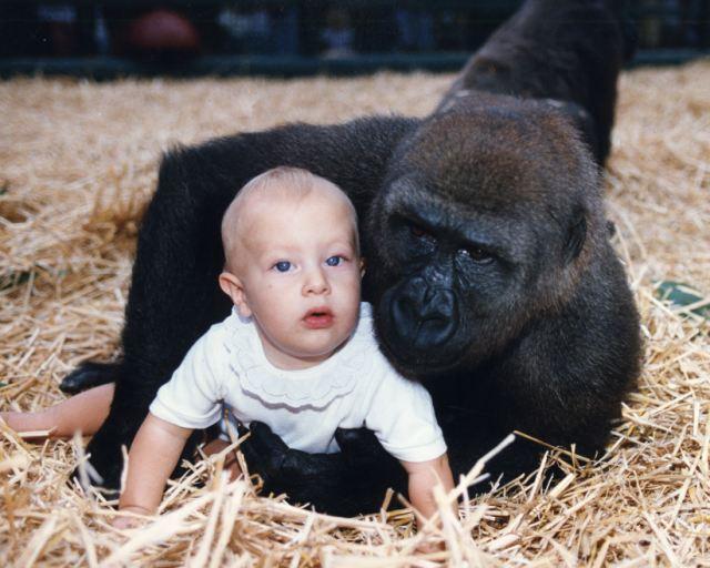 Tansy-Aspinall-con-gorila