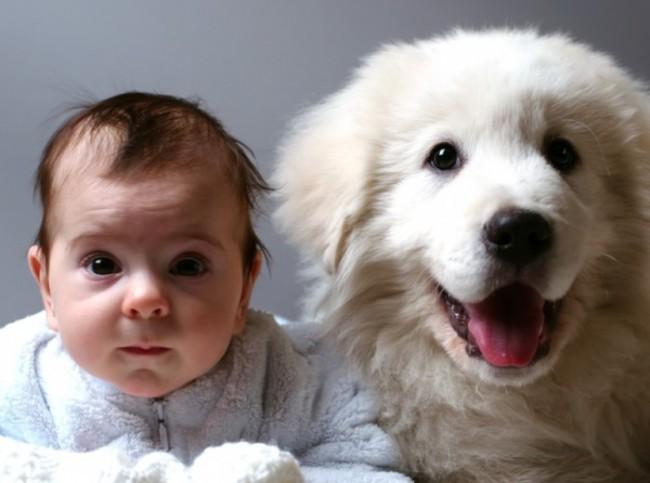 niños-y-animales-de-compañía