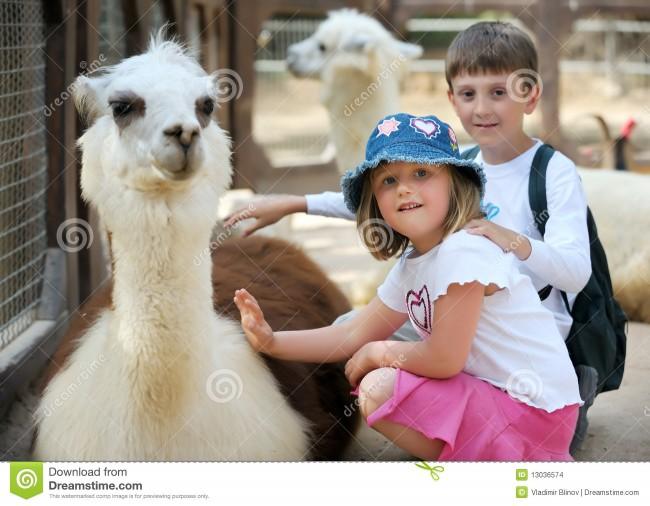 niños-y-animales-en-el-parque-zoológico-13036574