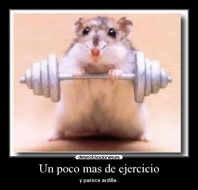 strong_hamster