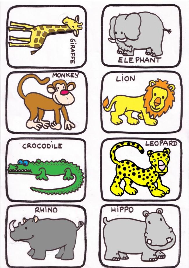 animales salvajes 1