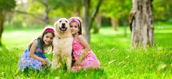 perro para niños ideales