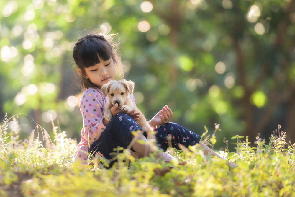 perros-ideales-para-ni-os