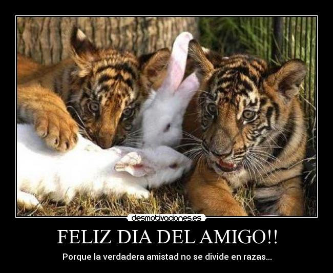 eltoilet_blogspot_com_animales_amigos001 (1)
