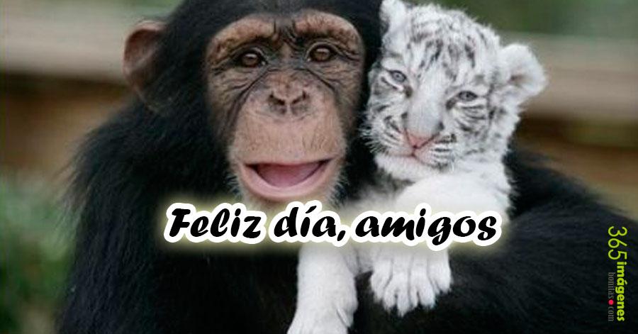feliz-dia-amigos
