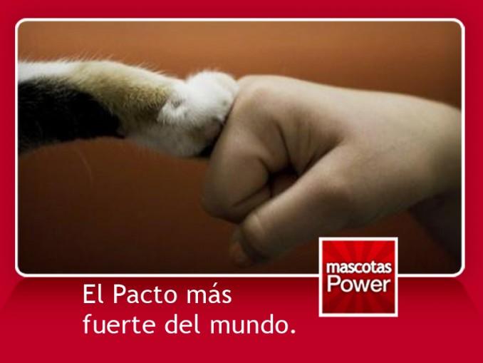 1307-frases-perros_mascotaspower_promesa-de-amor