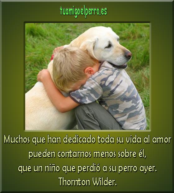 nino_perder_perro