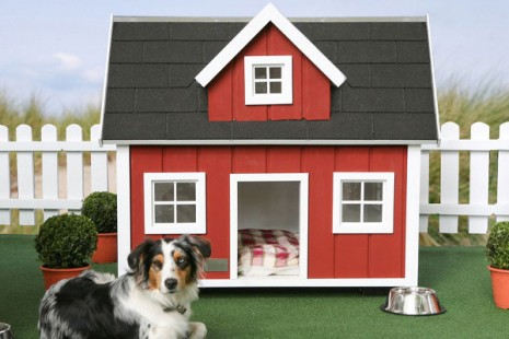 cuchaury-house-designs-for-your-dog7