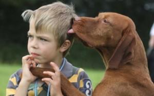 perro-con-su-dueño1