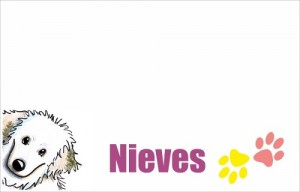 funda-almohada-personalizada-nombre-y-dibujo-de-tu-mascota-14165-MLM20083640694_042014-O