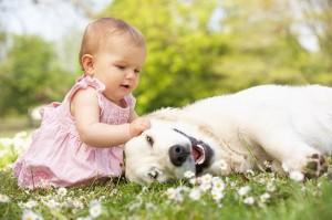 bebe-jugando-con-perro