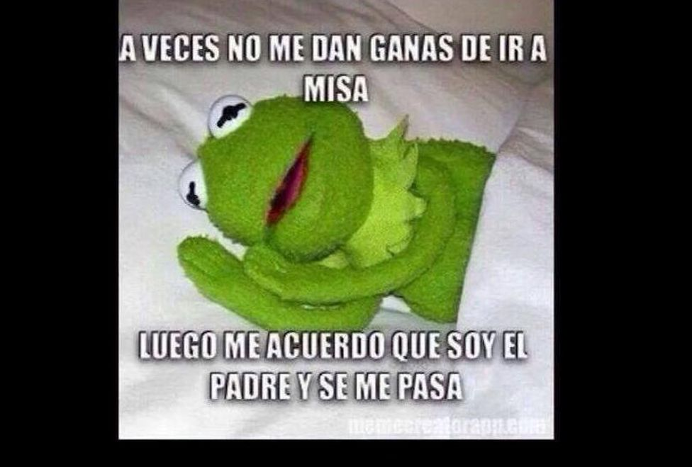 memeRana_Rene-Memes_de_la_rana_rene-a_veces_quisiera-muppets-Kermit_MILIMA20141001_0246_3