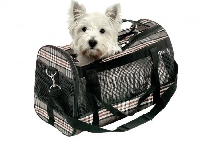 regalos-mascotas-bolsa-transporte
