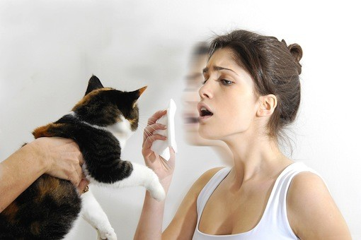 alergia-a-los-animales