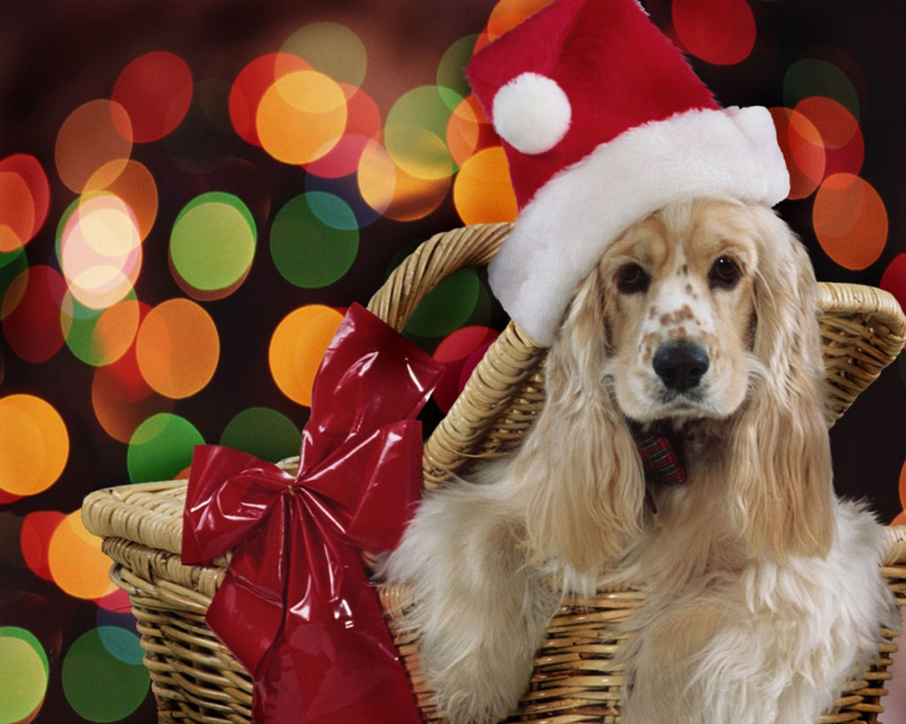 animWallpapers Christmasanimal21280