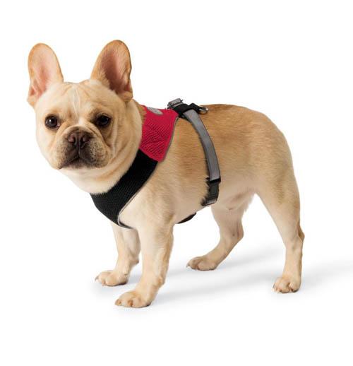 collarharnés-para-perro
