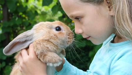 conejo-y-niños