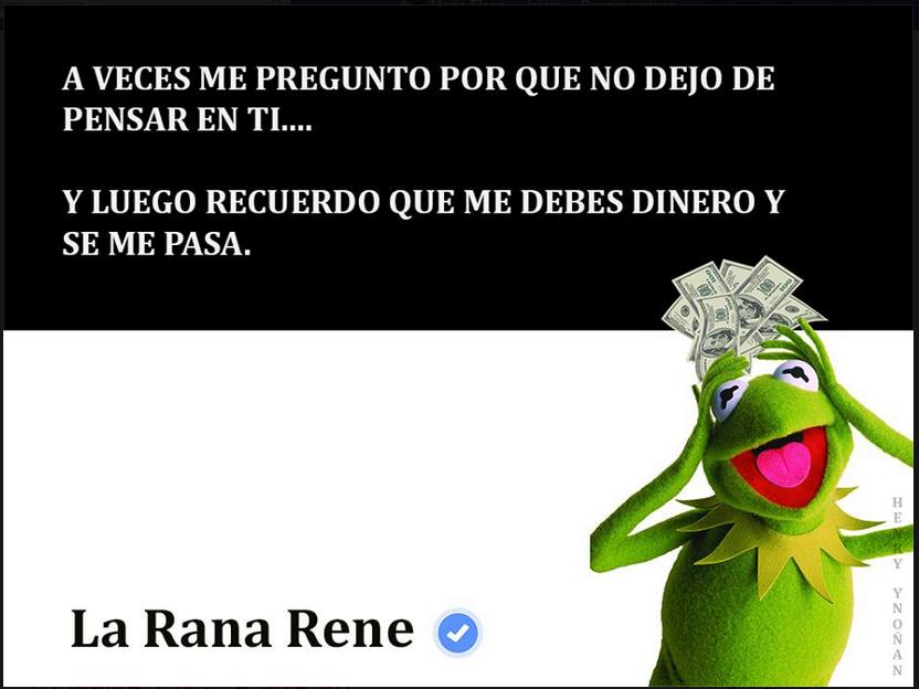 rené-10