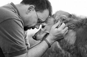 fiel-que-un-perro3