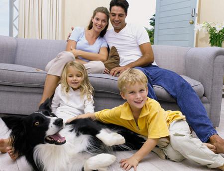 las-mascotas-en-la-familia