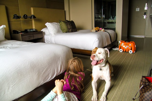 Hotel-La-Jolla-San-Diego-Hotels-Pet-Friendly-Hotel