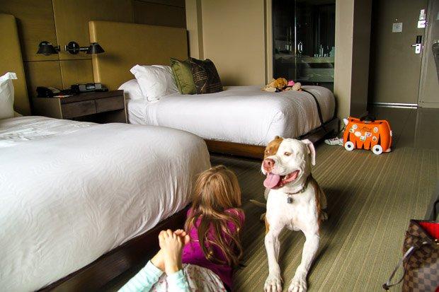Hotel-La-Jolla-San-Diego-Hotels-Pet-Friendly-Hotel