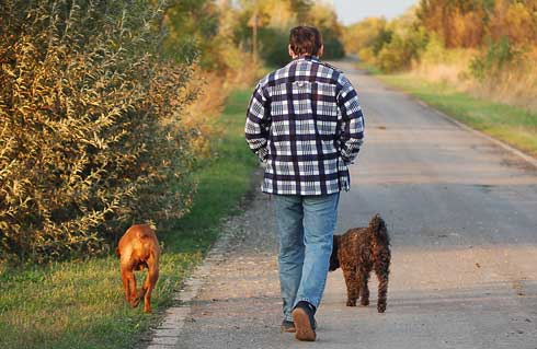 paseo-perros