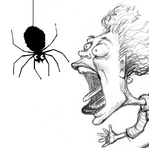 Fear-of-Spiders