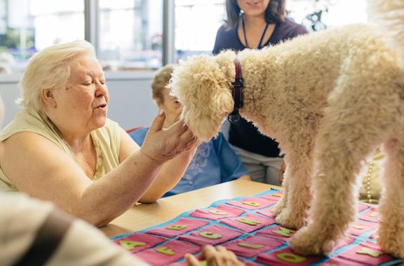 portadaBuendiario-anciana-juega-perro