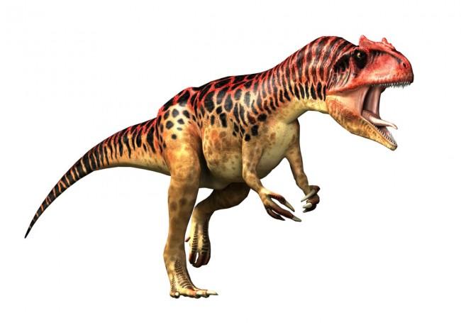 Dinosaurios Carnivoros