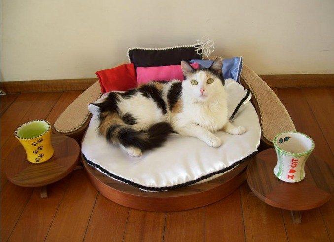 Diferentes modelos de cuchas de perros y gatos im genes - Trepadores para gatos ...