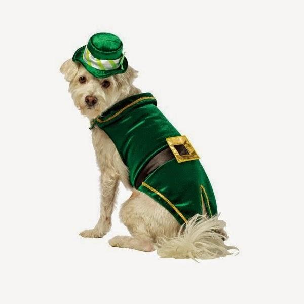 zzzzzzzzzzzzdisfraz-de-leprechaun-deluxe-para-perro