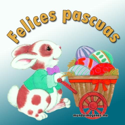 Imágenes simpáticas de conejos con frases para desear