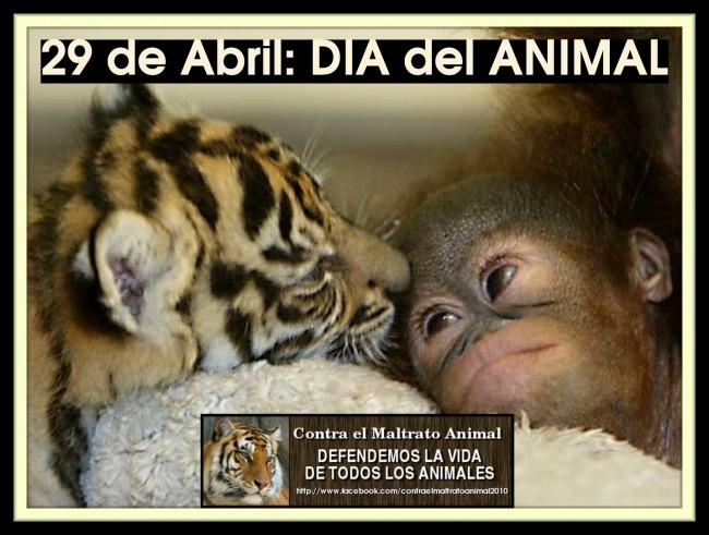 DIA DEL ANIMAL