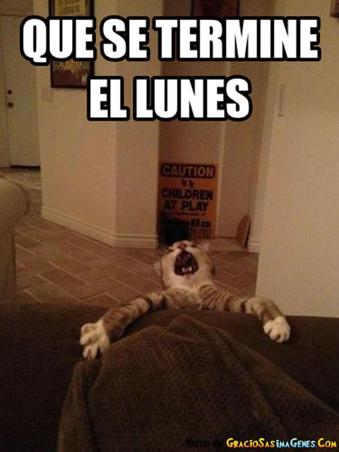 Lunes (1)