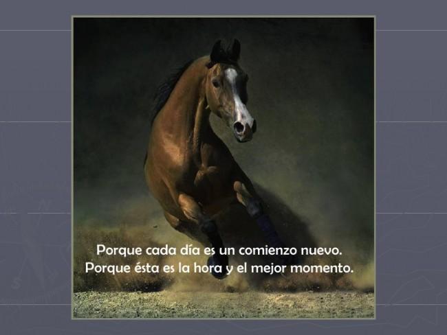 caballos-benedetti-18-728