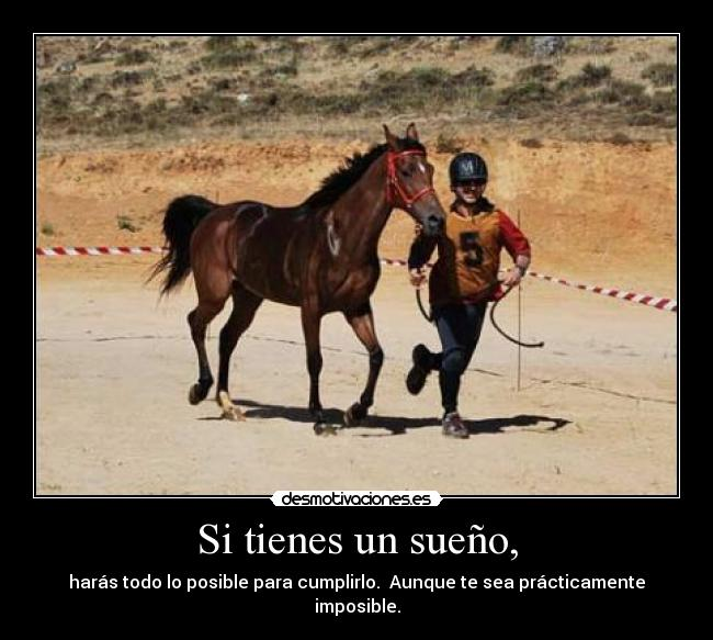 caballosweb1