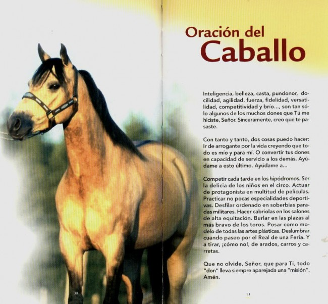 oracionalcaballo