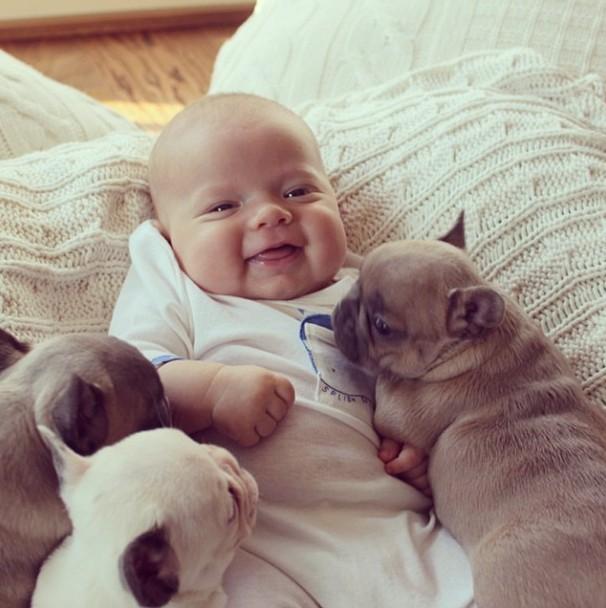 1-bebes-con-perros