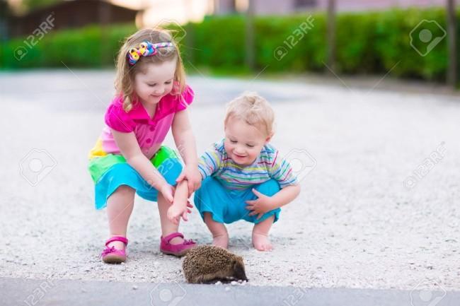 39876869-Ni-os-jugando-con-un-erizo-Los-ni-os-y-las-mascotas-Ni-a-y-beb-adorable-que-juegan-con-un-animal-sal-Foto-de-archivo
